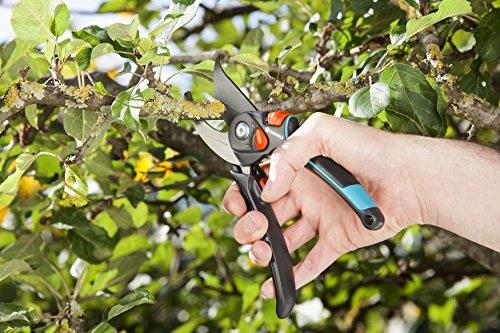 gardena-gartenschere-b-s-xl-pflanzenschonende-baumschere-mit-bypass-schneide-fuer-aeste-und-zweige-max-schneid-durchmesser-24-mm-stufenlose-griffoeffnung-8905-20-4