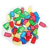 WINOMO 60pcs plastica portachiavi e bagagli ID Tag etichette con portachiavi (colore casuale)