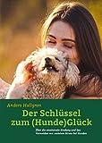 Der Schlüssel zum (Hunde)Glück: Über die emotionale Bindung und das Vermeiden von sozialem Stress bei Hunden