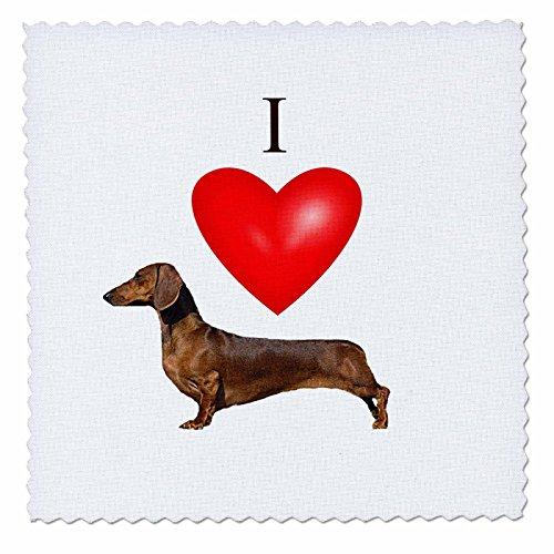 dy Mertens Hund Designs - I Love Dackel - Quilt Squares, Polyester, 10x10 inch Quilt Square ()
