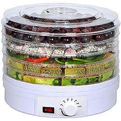 Paneltech 5 couches Déshydratation des fruits séchés Machine aux fruits séchés Séchoirs à fruits et légumes