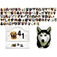 Siberian Husky porta numero civico in ceramica decorato a mano Dog qualsiasi numero disponibile nel Regno Unito. free UK Delivery