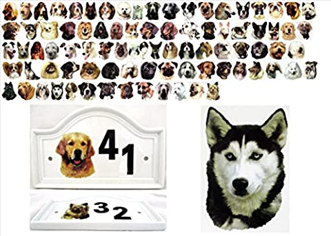 Siberian Husky House Door Number Plaque Ceramic Dog Number Sign Any Number Available Hand Decorated in the U.K. Free UK Delivery