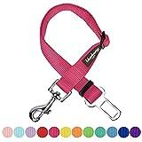Blueberry Pet 8Farben Classic Nylon Halsbänder & 5Farben personalisierbar Halsbänder, passende Leine und Geschirr separat erhältlich