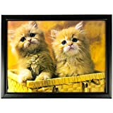 Get Goods Padded Lap Trays - 23 Assorted Designs - Hard Top / Bean Bag Fabric Bottom - 43cm x 33cm (Twin Kittens In Basket)