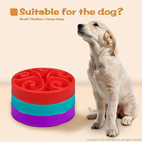 wangstar-Pet-Dog-Slow-Feed-Dog-Bowl-Fun-Interactive-Feeder-Slow-Feed-And-Drink-Water-Bowl-For-Dogs-Purple