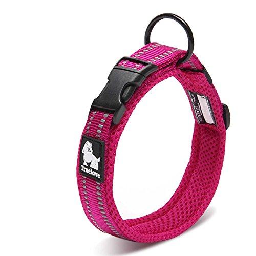 Einstellbare 3M reflektierende Hundehalsband Nylon Haustier Kragen gepolstert 1 ''große atmungsaktive Anti-Choke Anti-Reiben Mesh mit Ring (S Länge: 35-40cm, Rose)