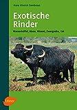 Exotische Rinder: Wasserbüffel, Bison, Wisent, Zwergzebu, Yak