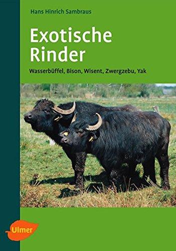 Exotische Rinder: Wasserbüffel, Bison, Wisent, Zwergzebu, Yak -