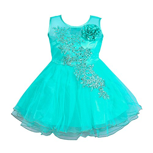 Wish Karo Baby Girls Party Wear Frock Dress DN (fe1051sgnw, 6-12 Months)