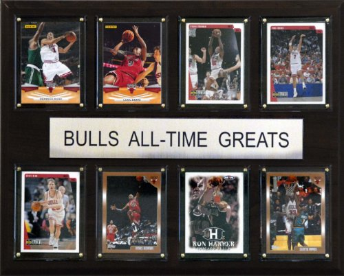 C & I Collectables NBA Chicago Bulls Liste der Spieler-Größen Plaque