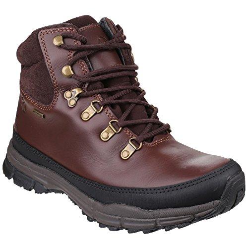 Cotswold Beacon Mens lacets de chaussure de randonnée Brown