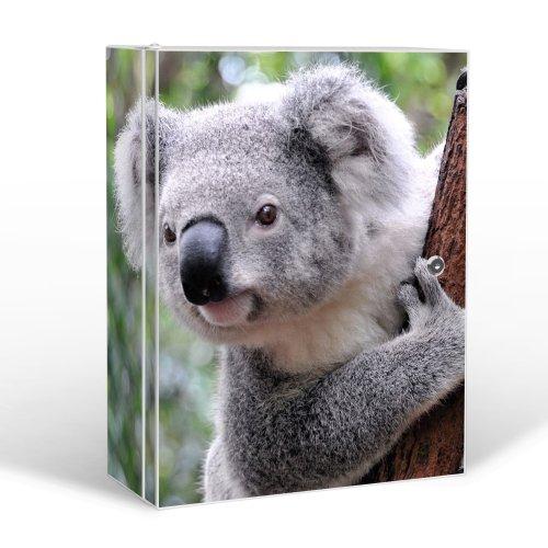 BANJADO Medizinschrank groß abschließbar / Arzneischrank 35x46x15cm / Medikamentenschrank aus Metall weiß mit Motiv Koala