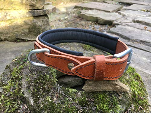 cognacfarbenes Hundehalsband