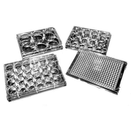 Evergreen 222-8046-01F microtiter-plates (100Stück)