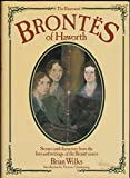The Illustrated Brontes of Haworth (Willow Books)