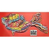 RAINBOW FISH IN Keramik und Polykarbonatharz. SCULPTURE WALL IN MODERN ART UNTERZEICHNET ITALDESIGNFOGLIARO