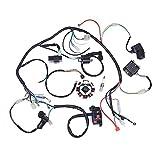 Romsion elettrico cablaggio Wire Loom CDI Statore montaggio per ATV Quad 125cc-250cc