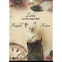 Liebe auf den ersten Blick . Ragdoll Kitten (Wandkalender 2018 DIN A4 hoch): Ragdolls erfreuen sich dank ihres zauberhaften Wesens und ihrer Schönheit ... (Monatskalender, 14 Seiten ) (CALVENDO Tiere)