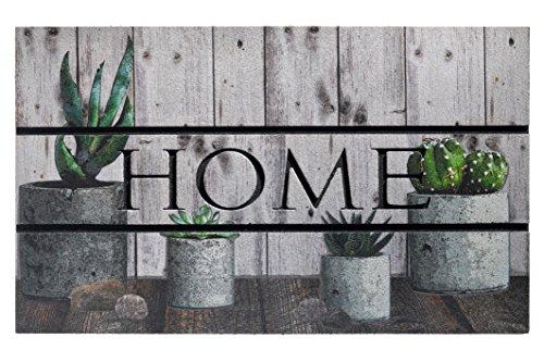 ECOMASTER 45 x 75 CM. Hochwertige und strapazierfähige Eingangsmatte - Fussmatte. GUMMIMATTE speziel für den Aussenbereich. Frostsicher. Design HOME Cactus. Farbe beige grün.