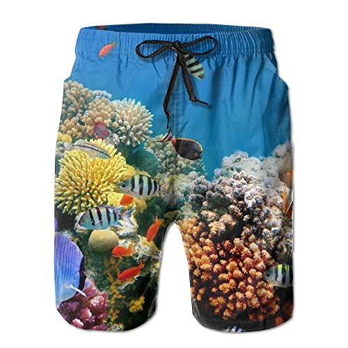 fdgjfghjdfj Tropical Fish Coral Reef Underwater Men's Beach Shorts Casual Summer Swim Trunks Surf Board Shorts Beach Pants with Pockets for Men XL -