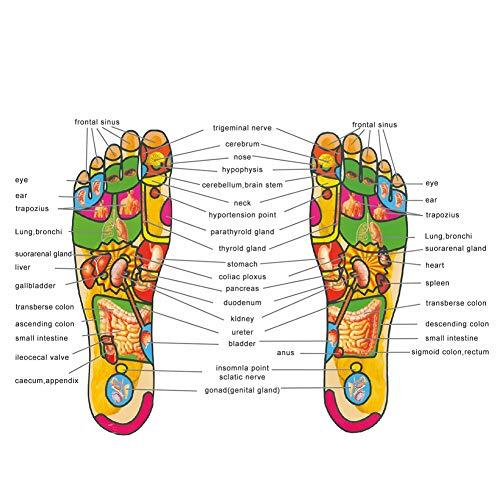 Semelle de massage magnétiques acupuncture Semelles Chaussure Tapis de santé perte de poids de réflexologie plantaire Semelle intérieure pour homme et femme