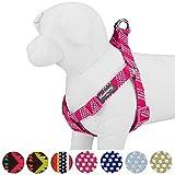 Blueberry Pet Handwerker Crochet inspiriert Endless Squares Hundegeschirr, 4Farben, passende Halsband und Leine separat erhältlich