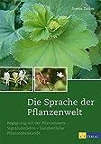 Die Sprache der Pflanzenwelt: Begegnungen mit der Pflanzenseele - Signaturenlehre - Ganzheitliche Pflanzenheilkunde -