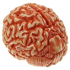 1 X 18cm Money Bank Urban Zombie cerveau Toy cadeau