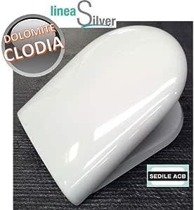 Sedile Wc Dolomite Clodia Originale.Sedile Per Wc Clodia Dolomite In Termoindurente Avvolgente Acb Ercos Silver Amazon It Fai Da Te