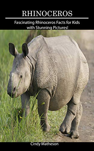 Rhinoceros: Fascinating Rhinoceros Facts for Kids with
