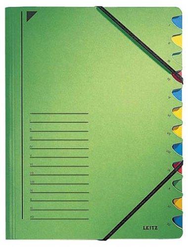 Leitz 39120055 Ordnungsmappe, 12 Fächer, Colorspankarton, grün