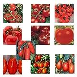 10 Arten - Italienisches Tomaten Mischung - 100 Samen