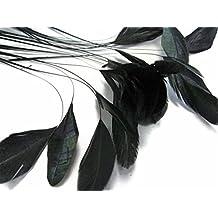 ERGEOB® penne della coda a strisce nero Coque 10-15 cm / 4-6 pollici di lunghezza di crafting materiale materiale copricapo spilla