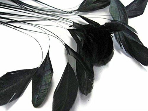 ERGEOB schwarz abgestreift Coque Schwanz Federn 10-15cm/4-6 Zoll Länge Basteln Material Kopfschmuck Brosche Material ()