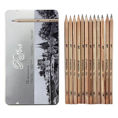 Professionelle Holz Bleistift 12x Bleistifte Skizzieren Zeichnung Holzkohle Bleistift Schule Schul-Bleistift mit einem Eisenkasten für Anfänger Künstler Studenten (Natur-holz-bleistift)