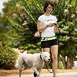 Manos Libres Correas para Perros con Cinturón y Estuche de Cremallera Estirable y Amortiguador de Chouque - Verde