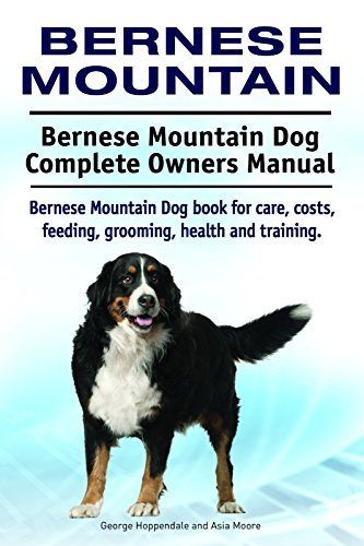 Bernese Mountain Dog Bernese Mountain Dog Book For Costs Care