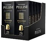 Pellini Caffè - Espresso Pellini Luxury Coffee Magnifico (12 Astucci da 10 Capsule, Totale 120 Capsule), Compatibili Nespresso