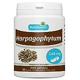 Acheter Harpagophytum 540 mg - 200 gélules
