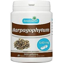 Harpagophytum 540 mg - 200 gélules