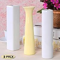 thanly semplice moderno vaso di fiori vaso