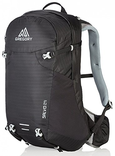 gregory-daypack-salvo-24-daypack-herren
