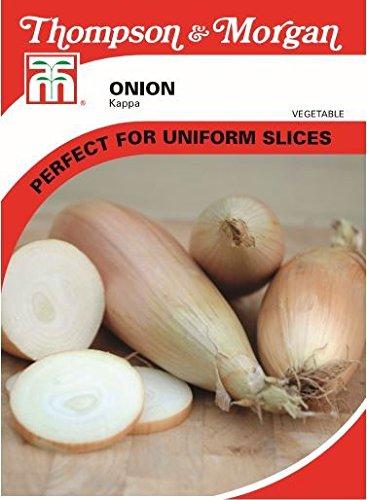 thompson-morgan-vegetables-onion-kappa-200-seed