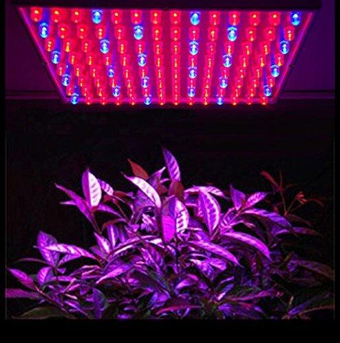 15W LED Pflanzenlicht Pflanzenleuchte Wachstumslampe Grow Wuchs PflanzenLampe Rot:Blau = 165:60