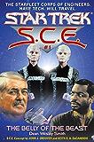 Star Trek: The Belly of the Beast (Star Trek: Starfleet Corps of Engineers)