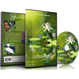 Relaxation DVD - Lotus Pond for Relaxing and Mediation and Mindfulness