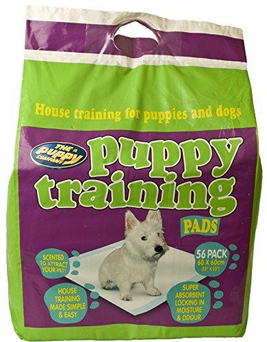 Pet Brands PUPPY TRAINING PADS - 56 PACK