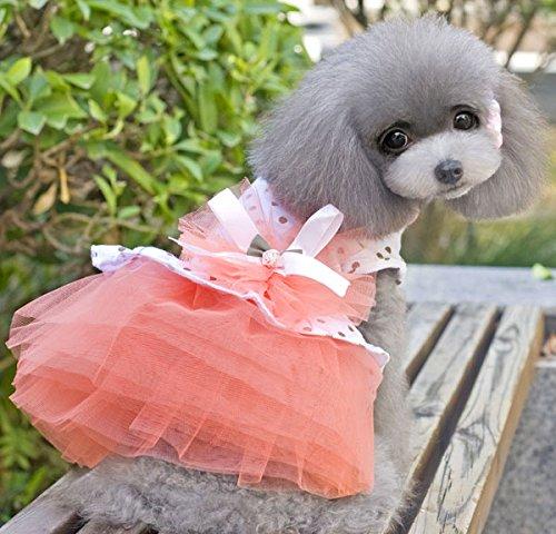 Imagen de smalllee _ _ _ _ _ _ _ _ _ _ _ _ _ _ _ _ _ _ _ _ de la suerte store dot gasa vestido de tutú falda flores lazo gato perro pequeño cachorro ropa disfraz de perro xs xl