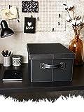 Amaris Elements Aufbewahrungsbox mit Deckel und Griffen I Viel Stauraum zur Aufbewahrung von Aktenordnern, Büchern, Kleidung Oder Spielzeug